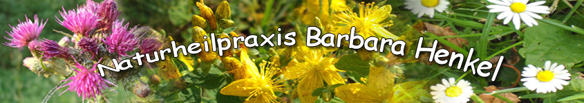 Naturheilpraxis Barbara Henkel